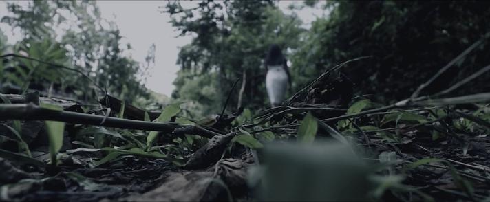 AngPagabot
